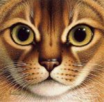 The Head of a Lovely Cat - Oil Painting Reproduction On Canvas