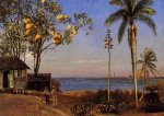 A View in the Bahamas - Albert Bierstadt Oil Painting