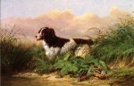 Setter and Woodcock - Arthur Fitzwilliam Tait Oil Painting