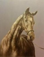 The head of horse - Oil Painting