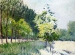 Lane Bordered by Trees - Gustave Caillebotte Oil Painting