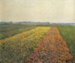 The Yellow Fields at Gennevilliers - Gustave Caillebotte Oil Painting