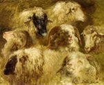 Heads of Ewes and Rams - Rosa Bonheur Oil Painting