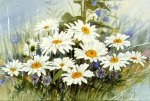A bunch of wild chrysanthemums - Oil Painting Reproduction On Canvas