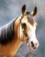 The Head of a Horse - Oil Painting Reproduction On Canvas