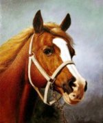 The Head of a Horse 2 - Oil Painting Reproduction On Canvas