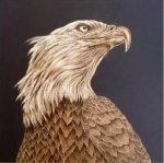 The Head of a eagle - Oil Painting Reproduction On Canvas