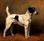A Hound - Oil Painting Reproduction On Canvas