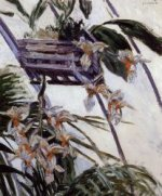 Orchids - Gustave Caillebotte Oil Painting