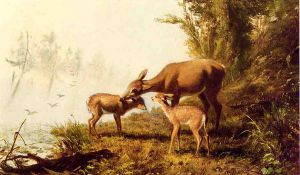 Deer in the Woods - Arthur Fitzwilliam Tait Oil Painting