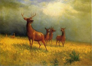 Deer in a Field - Albert Bierstadt Oil Painting