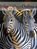 Two heads of zebras
