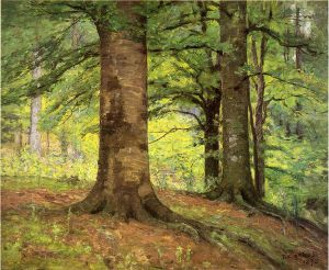 Beech Trees - Theodore Clement Steele Oil Painting