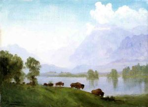 Buffalo Country - Albert Bierstadt Oil Painting