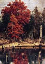 Autumn Wood in North Carolina with Tree Stumps in Water - William Aiken Walker Oil Painting