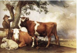Young Bull - Paulus Potter Oil Painting