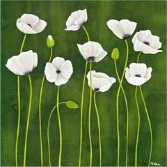 Some white poppy flowers - Oil Painting Reproduction On Canvas