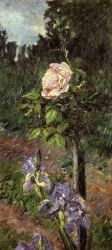 Rose with Purple Iris, Garden at Petit Gennevilliers - Gustave Caillebotte Oil Painting