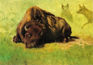Bison with Coyotes in the Background - Albert Bierstadt Oil Painting