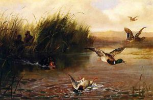 Duck Shooting - Arthur Fitzwilliam Tait Oil Painting