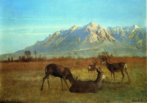 Deer in a Mountain Home - Albert Bierstadt Oil Painting