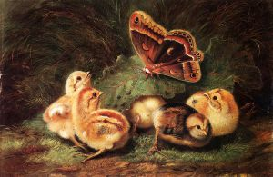 Young Chickens - Arthur Fitzwilliam Tait Oil Painting