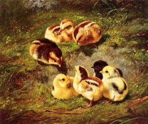 Chickens - Arthur Fitzwilliam Tait Oil Painting