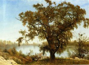 A View from Sacramento - Albert Bierstadt Oil Painting