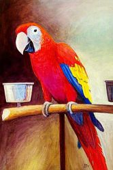 A Red Parrot in Its Cage - Oil Painting Reproduction On Canvas