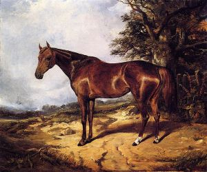 Thoroughbred - Arthur Fitzwilliam Tait Oil Painting