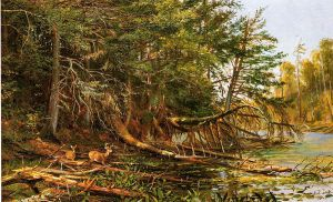 The Outlet of St. Regis Lake - Arthur Fitzwilliam Tait Oil Painting