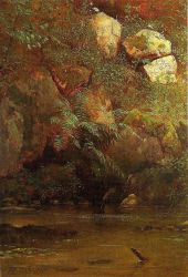 Ferns and Rocks on an Embankment - Albert Bierstadt Oil Painting