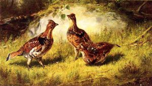Ruffed Grouse - Arthur Fitzwilliam Tait Oil Painting