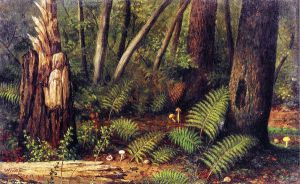 Forest with Ferns and Mushrooms - William Aiken Walker Oil Painting